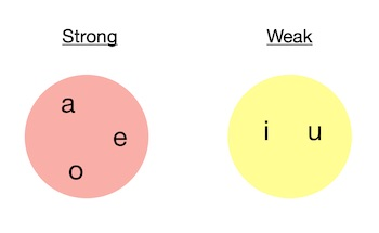 "Strong vowels ""a, e, o"" and weak vowels ""i, u"".  This division is important for Accent Rules we will learn next."