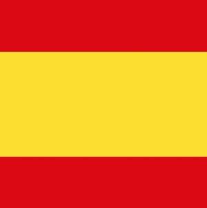 Spanish Grammar with Practice