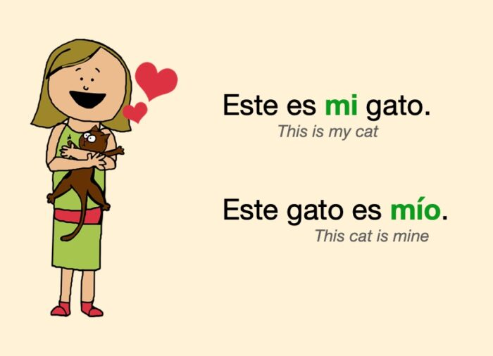 """""""mi"""" and """"mío"""", examples of possessive adjectives"""
