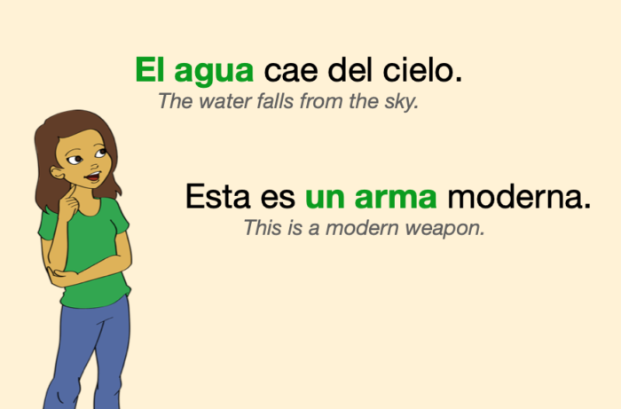 "Two examples of feminine nouns with masculine articles: ""agua"" and ""arma"""