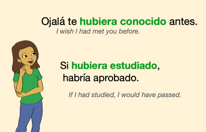 A couple of sentences with verbs in Spanish Past Perfect Subjunctive