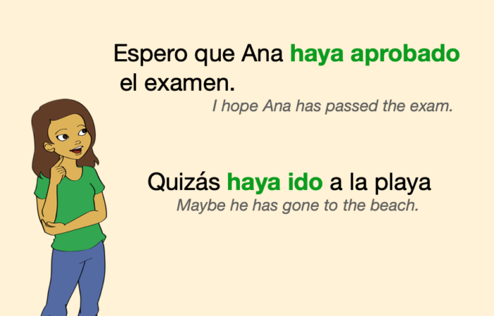 A couple of sentences with verbs in Spanish Present Perfect Subjunctive