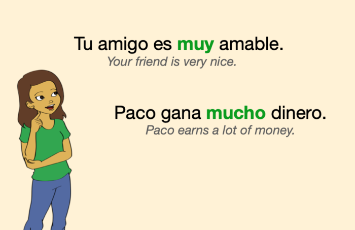 """Two Spanish sentences with """"muy"""" and """"mucho"""""""
